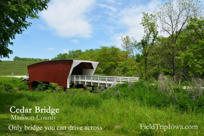 Cedar Covered Bridge in Madison County is the only covered bridge that you can drive across in a vehicle