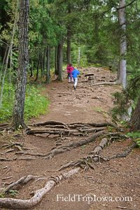 Gooseberry Falls State Park Hiking Trail