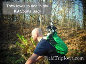 dog on bike in K( Sport Sack