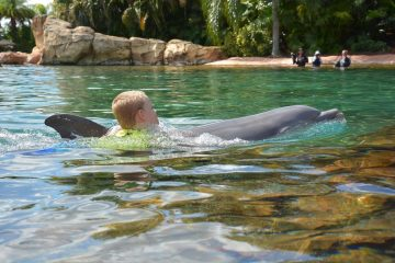 Boy being pulled by dolphin at Discovery Cove Florida