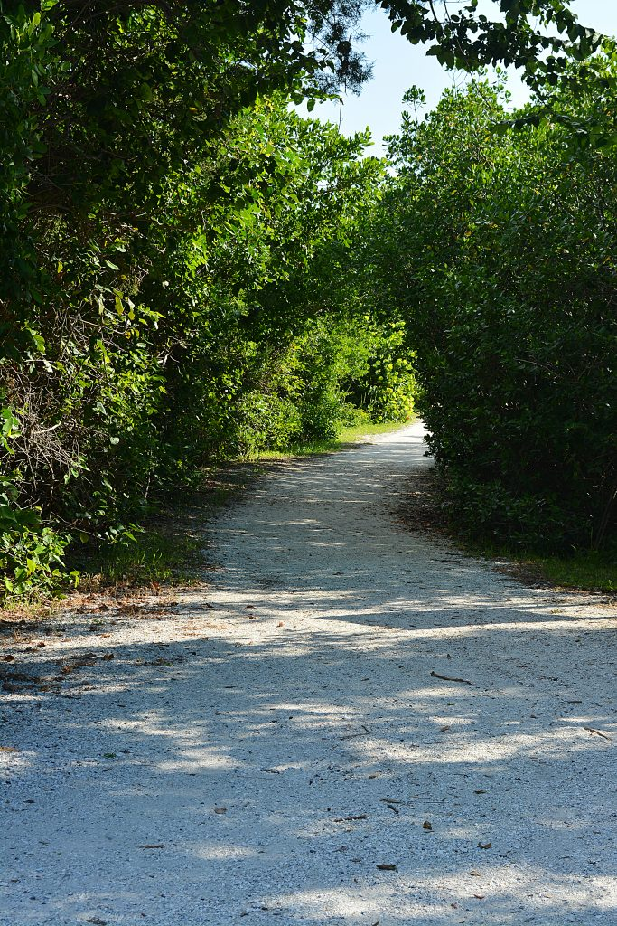 Entrance to walking paths at Leffis Key on Anna Maria Island Florida.