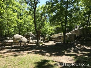 Larage boulders by picnic area at Elephant Rocks State Park