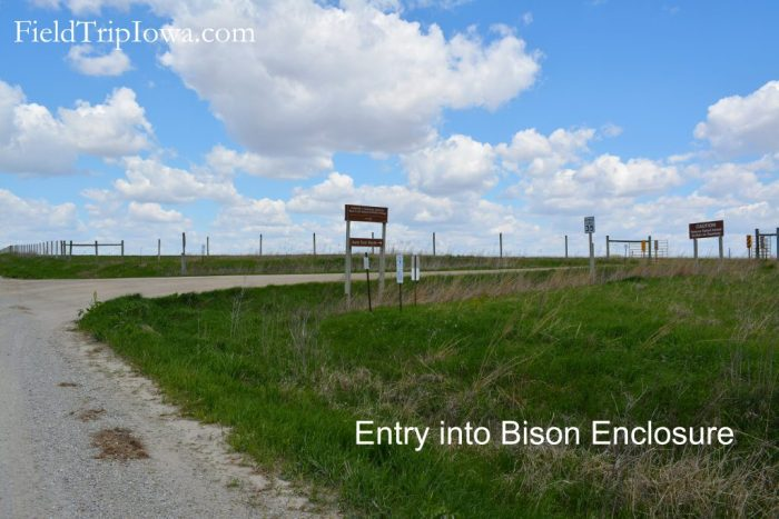 Entry road into Bison Enclosure at Neal Smith National Wildlife Refuge