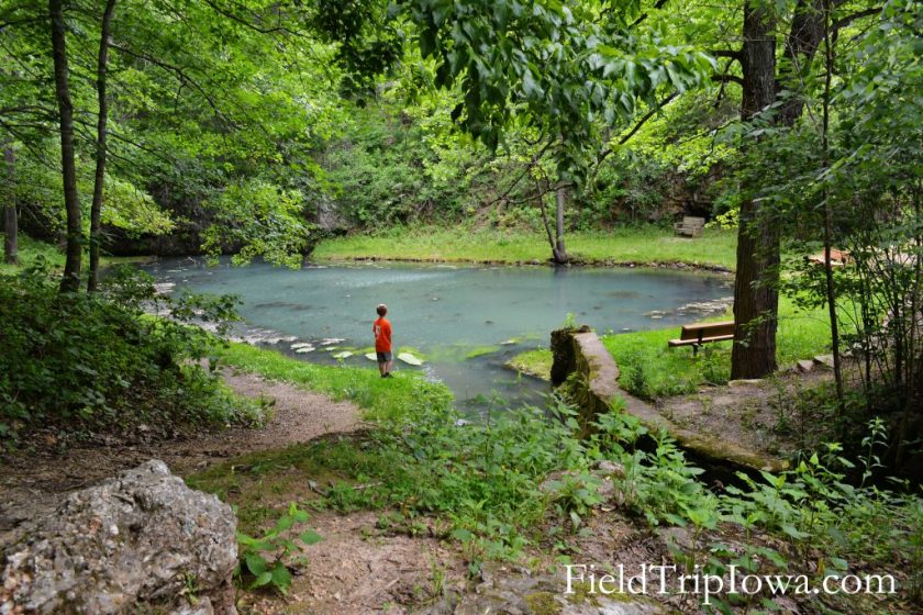 Natural spring at Onondaga Cave State Park in Leasburg MO