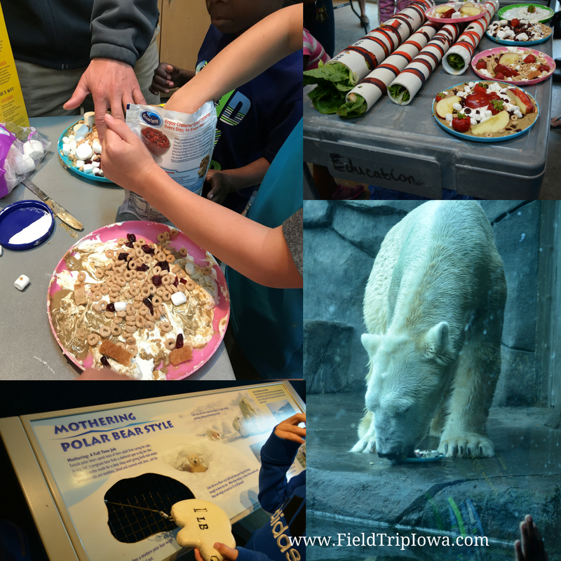 Como Park Zoo Behind-the-Scenes expereience Polar Bear Enrichment Twin Cities,MN
