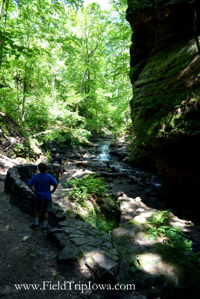 End of the trail at in Parfrey's Glen Natural Area near Devil's Lake Wisconsin