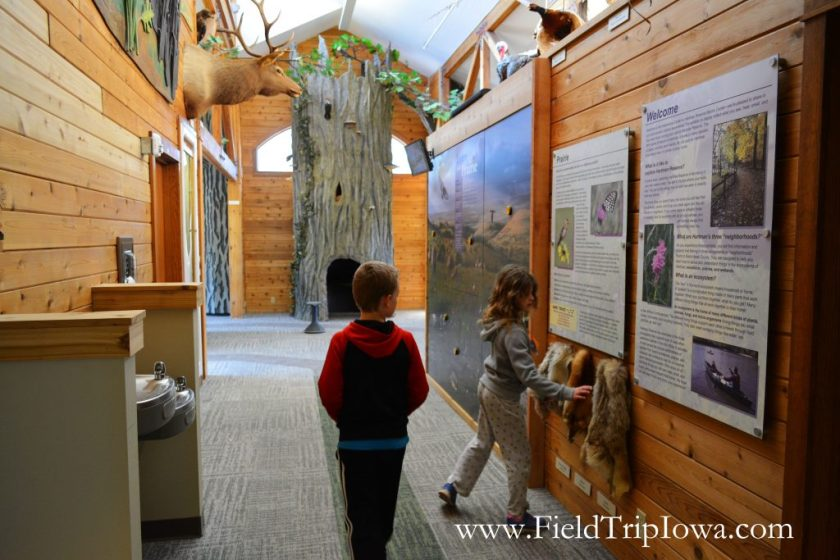 Children explore inside Hartmand Reserve Nature Center in Cedar Falls Iowa.