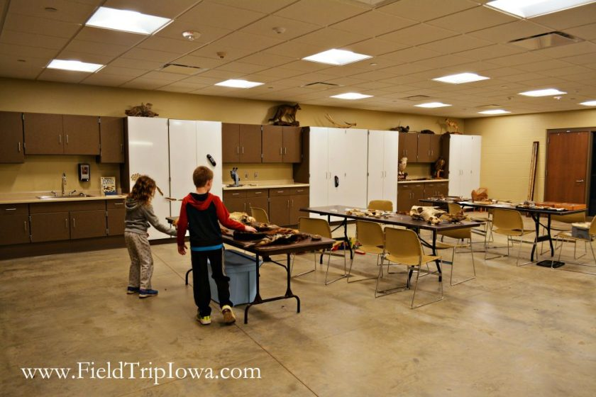 Classroom space at Hartmand Reserve Nature Center in Cedar Falls Iowa.