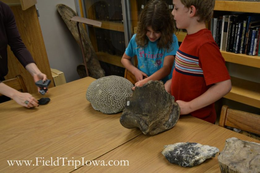 Children touch samples at Fryxell Geology Museum
