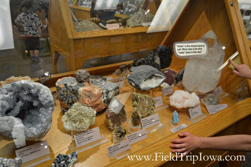 Rocks display at Fryxell Geology Museum