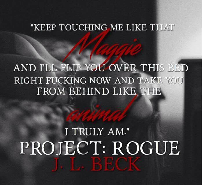 Project Rogue Teaser 4