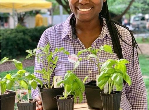 Sowing Her Dream: Deep Roots Organic Farm