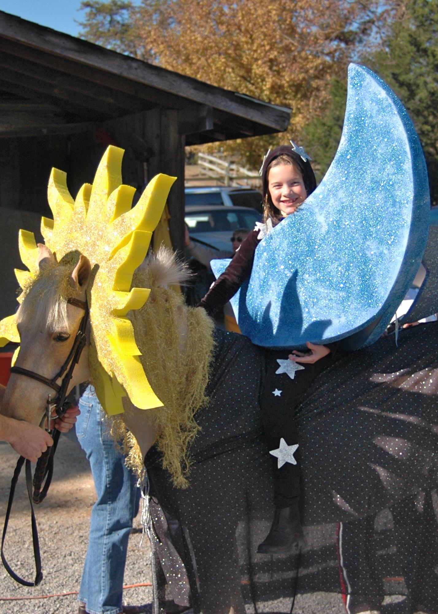 Lemon Drop small pony for lease Fiesta Farm Knoxville TN  Fiesta Farm