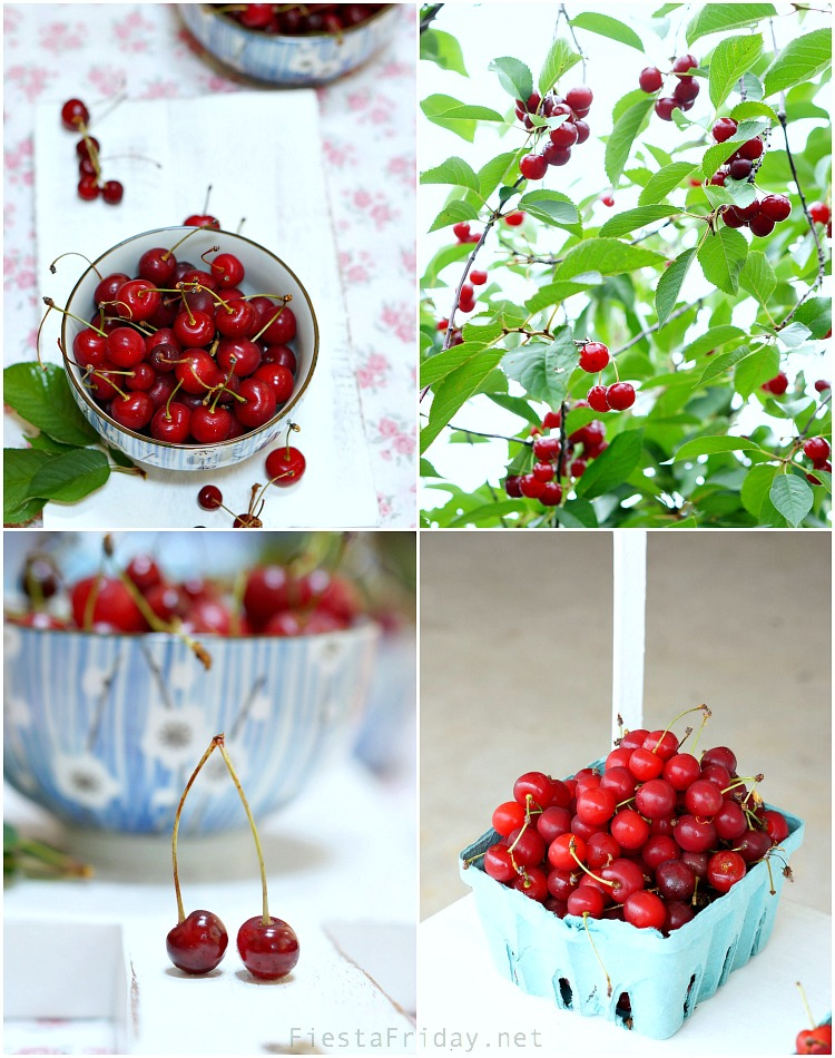 cherry picking season | fiestafriday.net