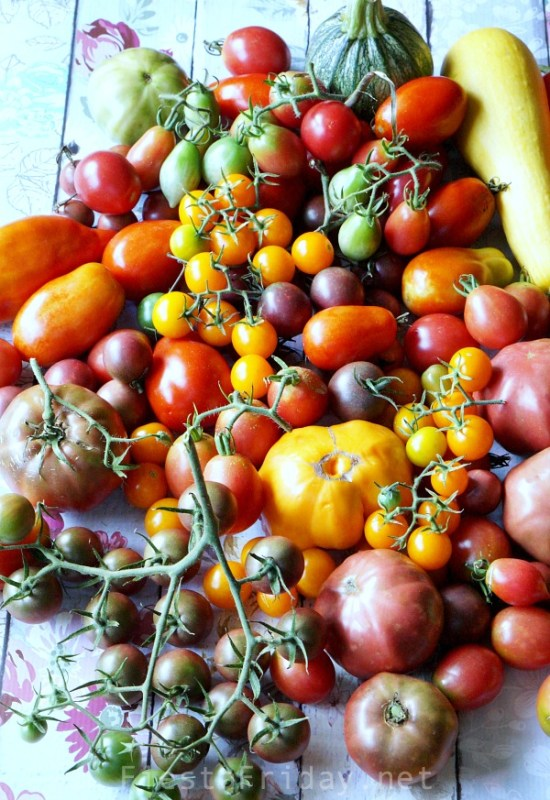 summer-tomatoes | fiestafriday.net