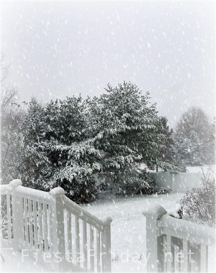 First Snow of The Season | FiestaFriday.net