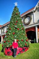Charlene Christmas tree