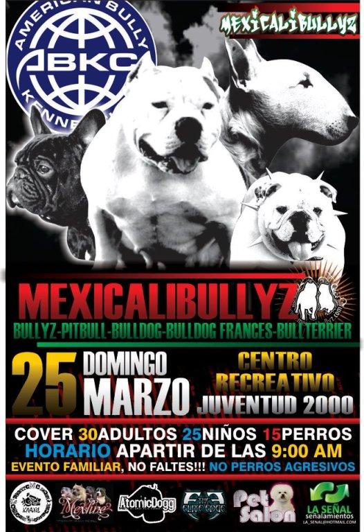 mexicalibullyz 2012