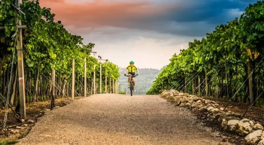 Ruta ciclismo Verona