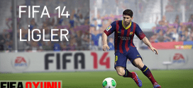 FIFA 2014 LİGLER