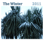 The Winter: 2011