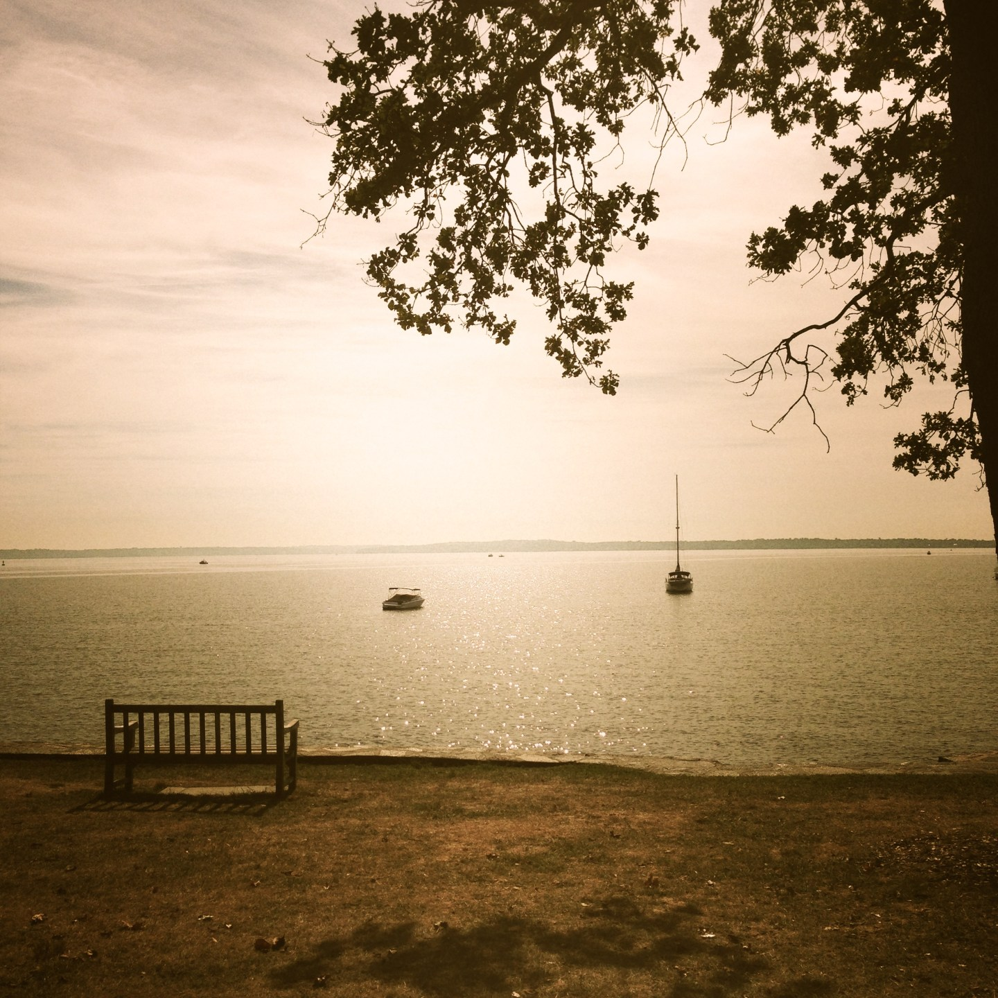 Park bench with a view of the sounds in Larchmont Manor Park.