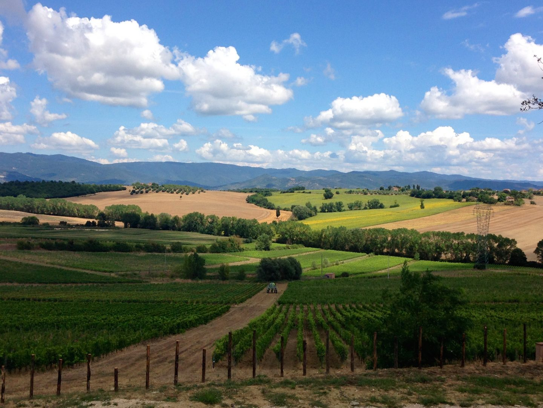 Breathtaking Tuscan countryside in Cortona.