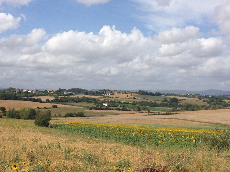 Taking a walk in the countryside of Cortona, Tuscany.