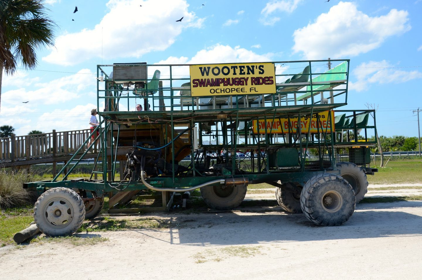Taking a buggy ride in the Everglades at Wootens.