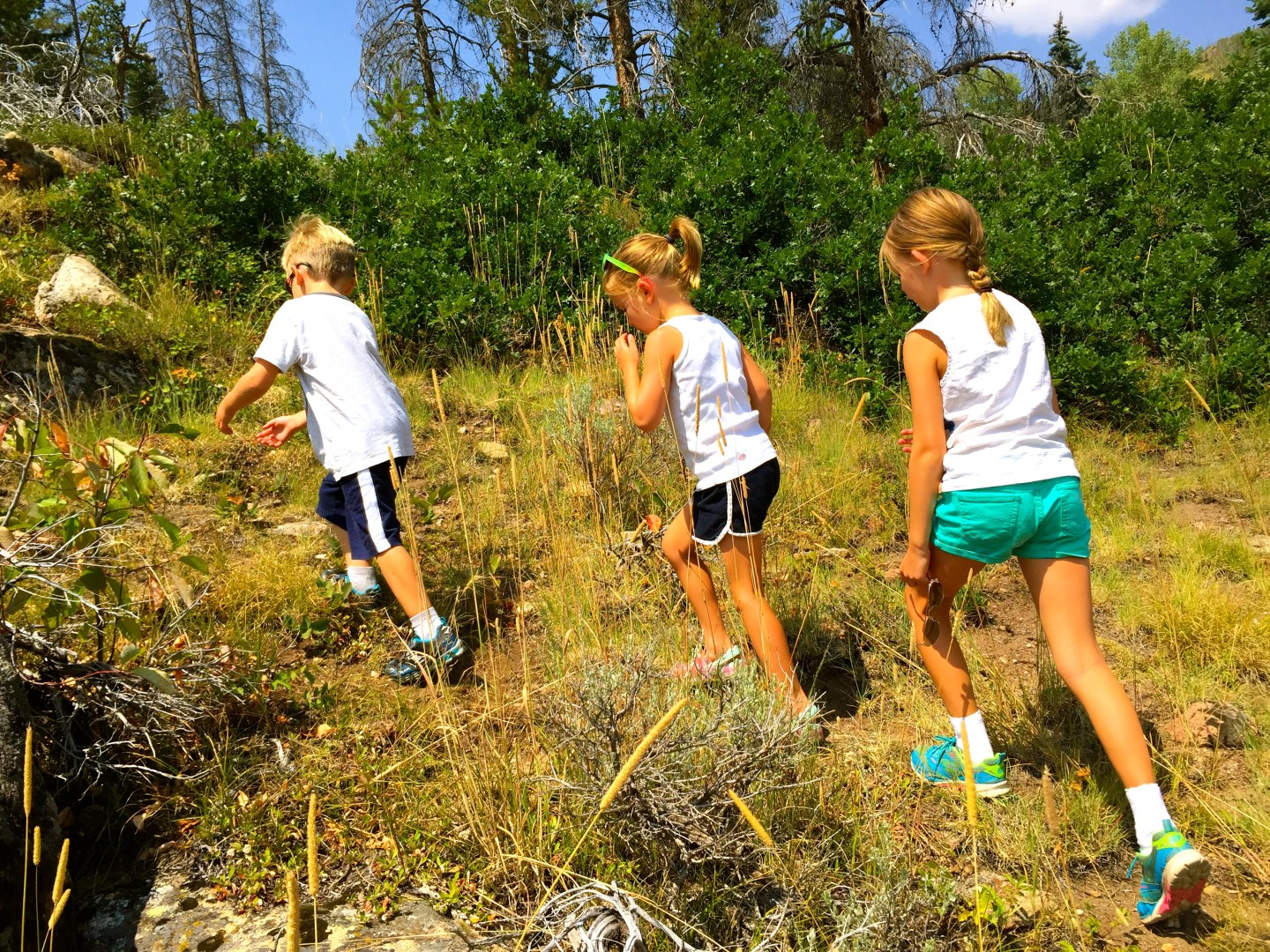 Things to do in Steamboat Springs in summer, hiking