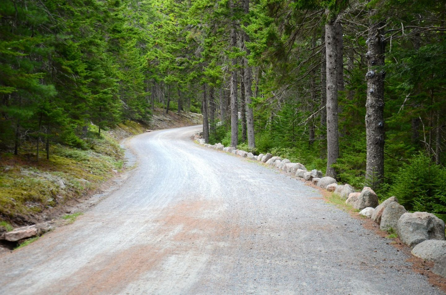 Taking a walk on the carriage roads at Acadia National Park