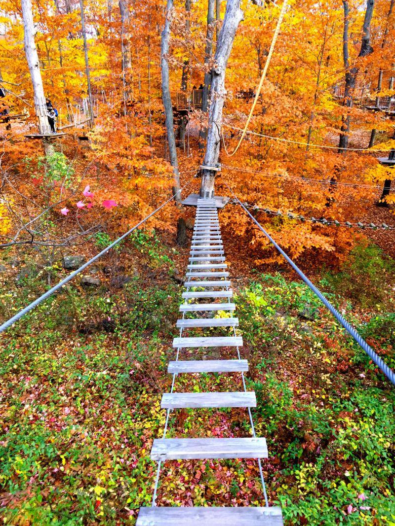 connecticut-adventure-park-bridgeport-img_6999