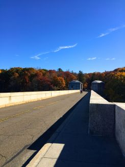 new-york-westchester-kensico-img_6912
