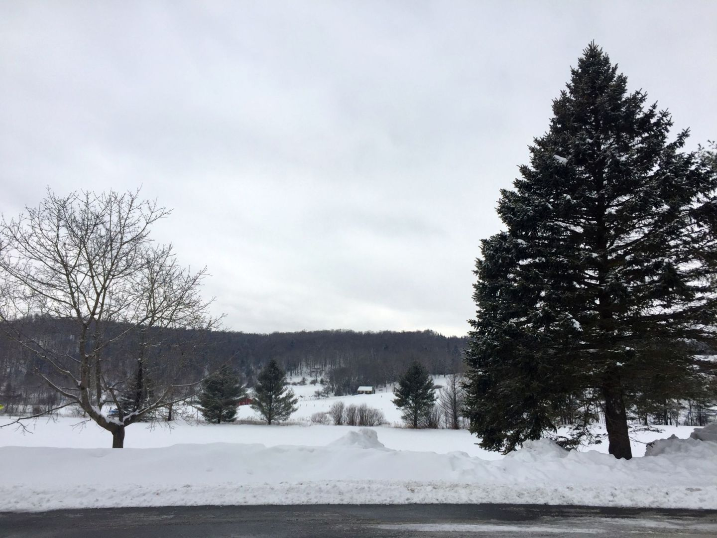 Wintery, snowy landscape in Wilmington Vermont