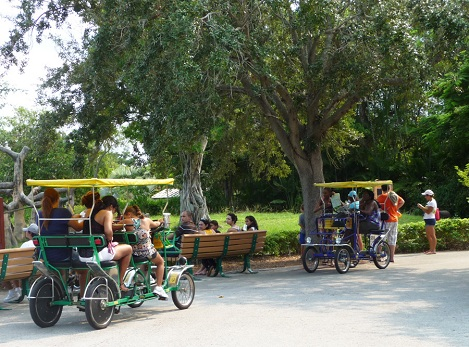 Having fun on the cycles at Miami zoo.