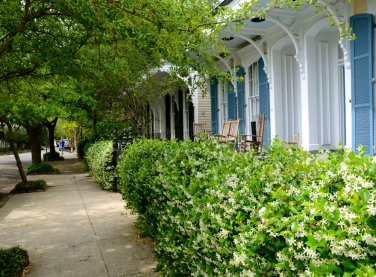 garden-district-new-orleans-porch-
