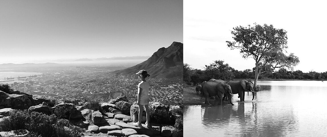 Mountains and wildlife in South Africa.