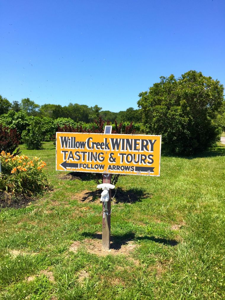 Cape May lighthouse may have been closed, but wine vineyards were open!