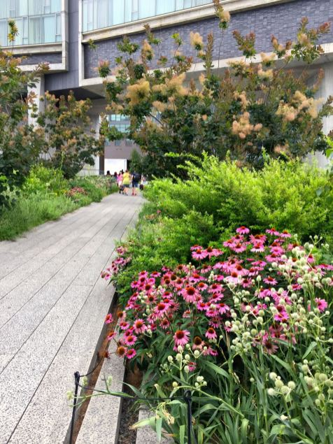 Walking along the Highline in New York City in the summer.