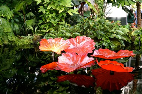 Chihuly-lilly-pads-persian-pond-new-york-