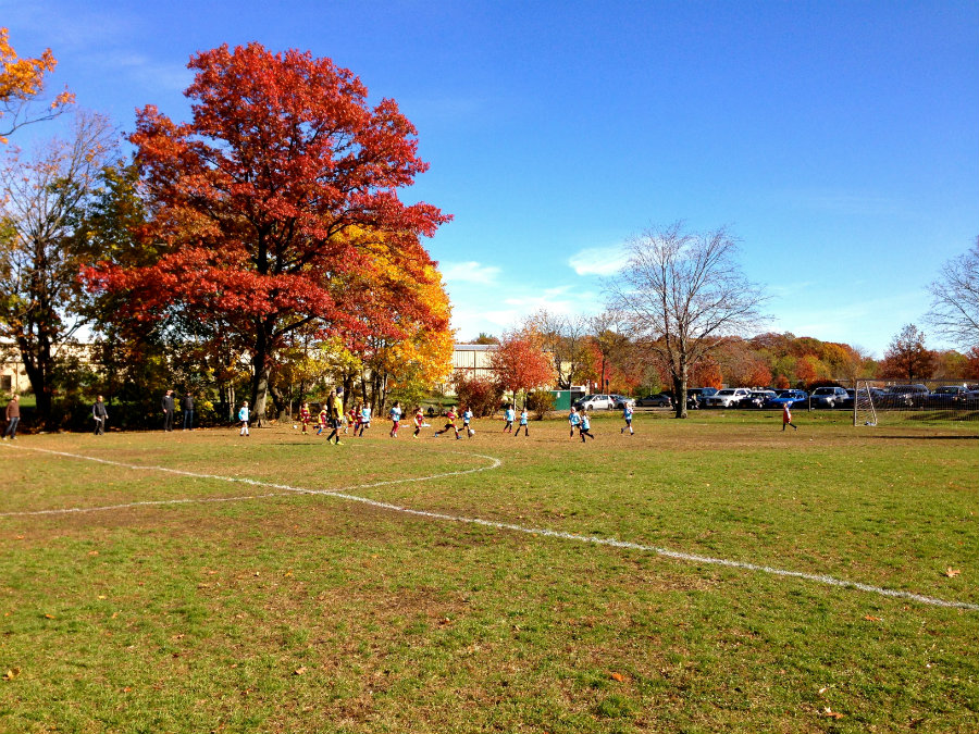 Watching a soccer game at Flint Park in Larchmont, NY.