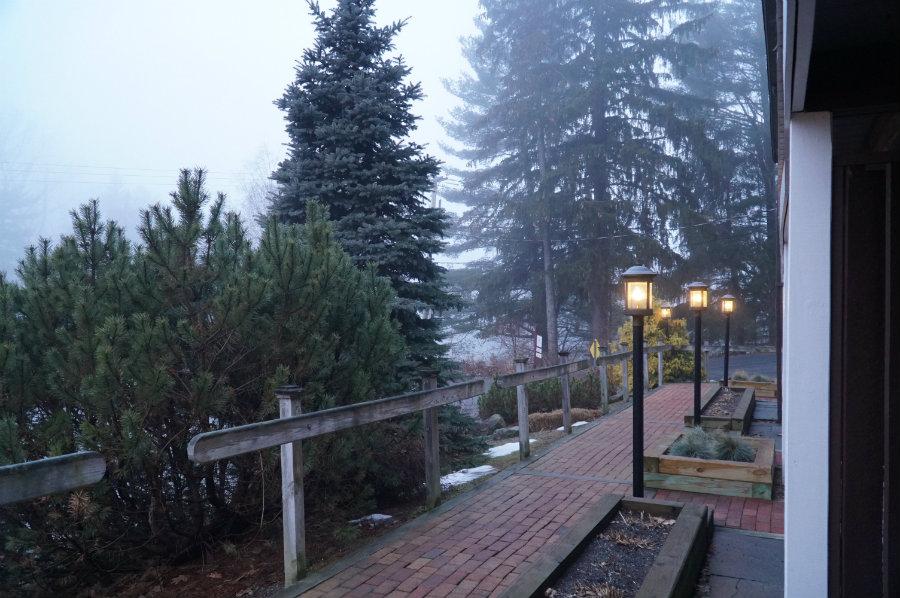 Foffy morning walk outside the Swiss Hutte inn
