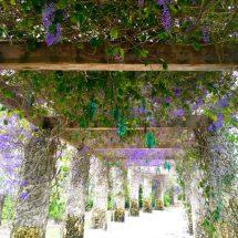 Visit Naples Botanical Garden In Fl