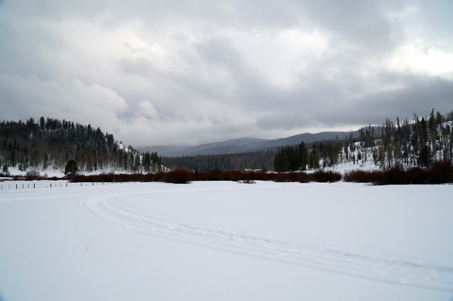 Snowmobile tracks in the Yampa Valley outside of Steamboat Springs, CO