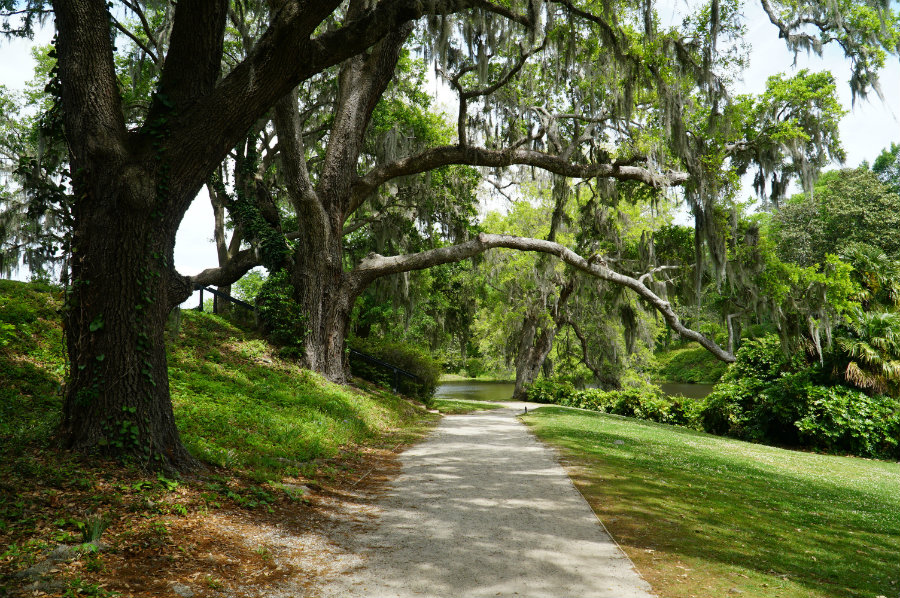 A tour of Middleton Plantation in Charleston, SC on our Charleston Getaway