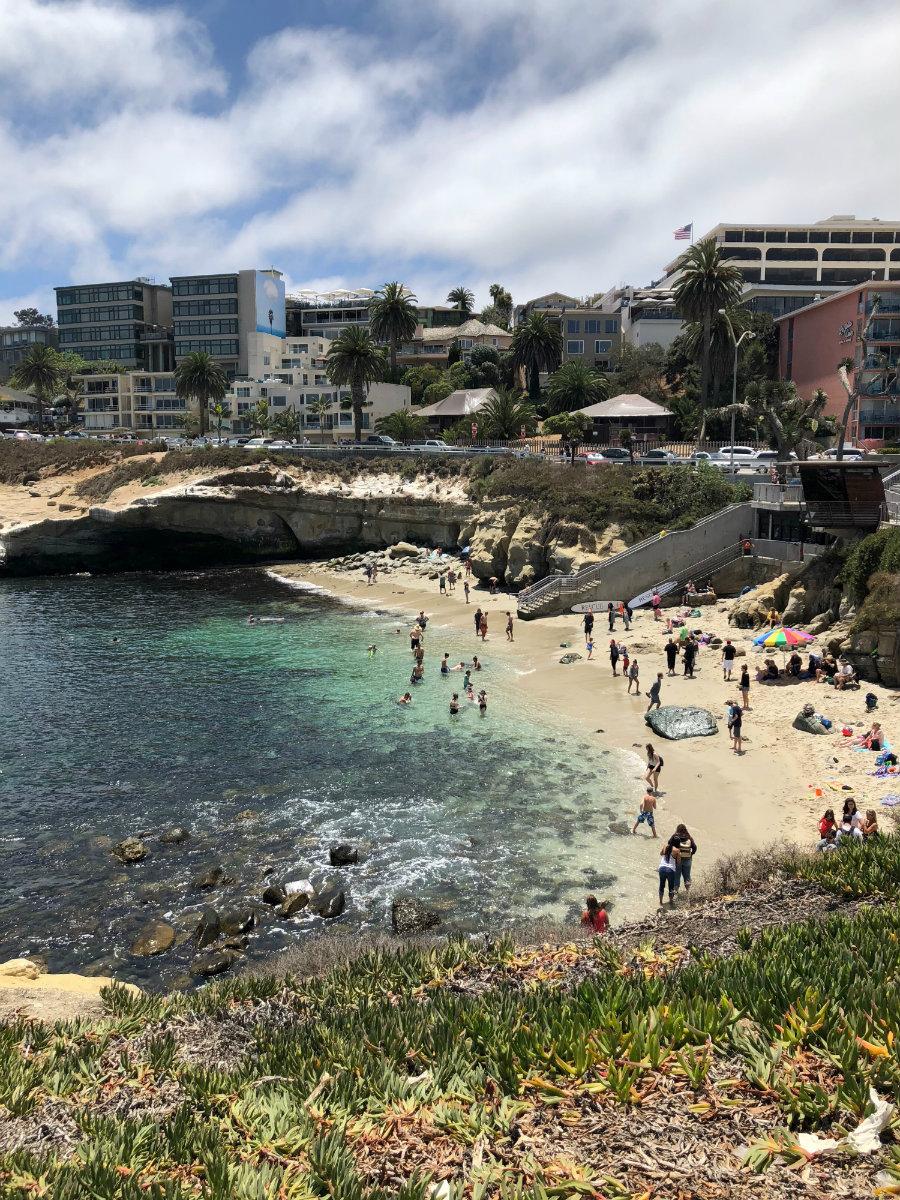A view of La Jolla Cove