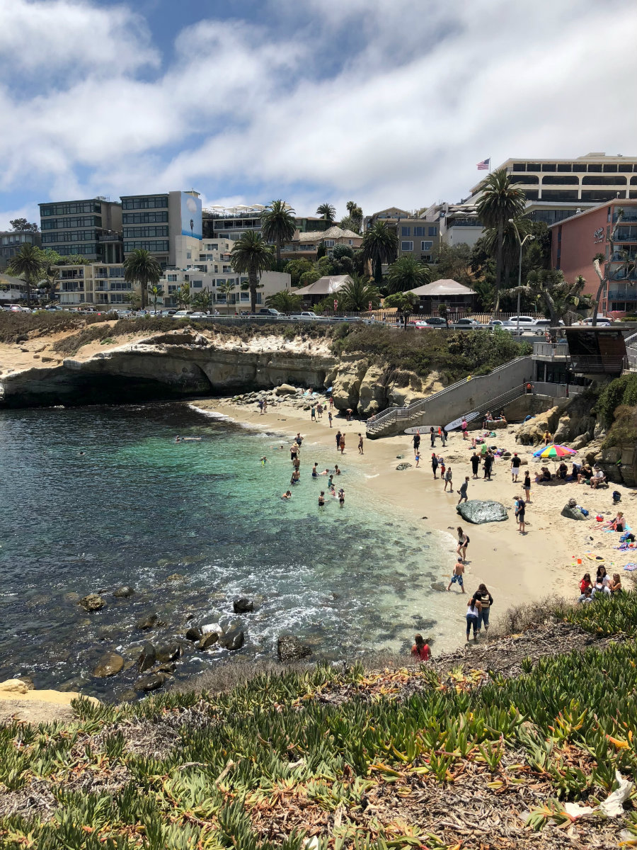 A view of La Jolla Cove