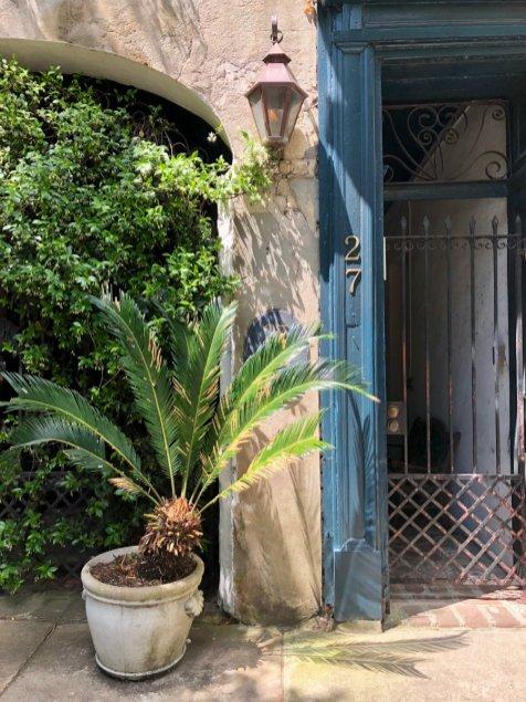 Charleston-palm-tree-caribbean-look