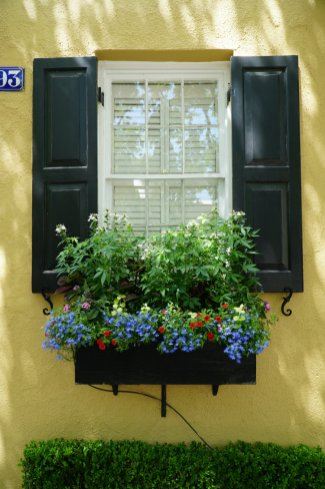 flower-box-Charleston