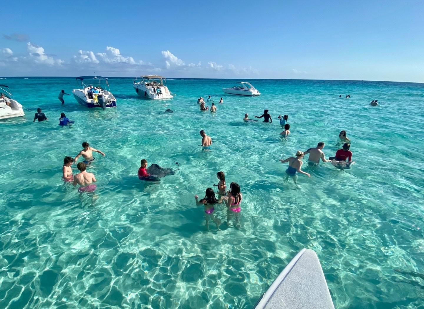 Day trip to Stingray City in Cayman Islands